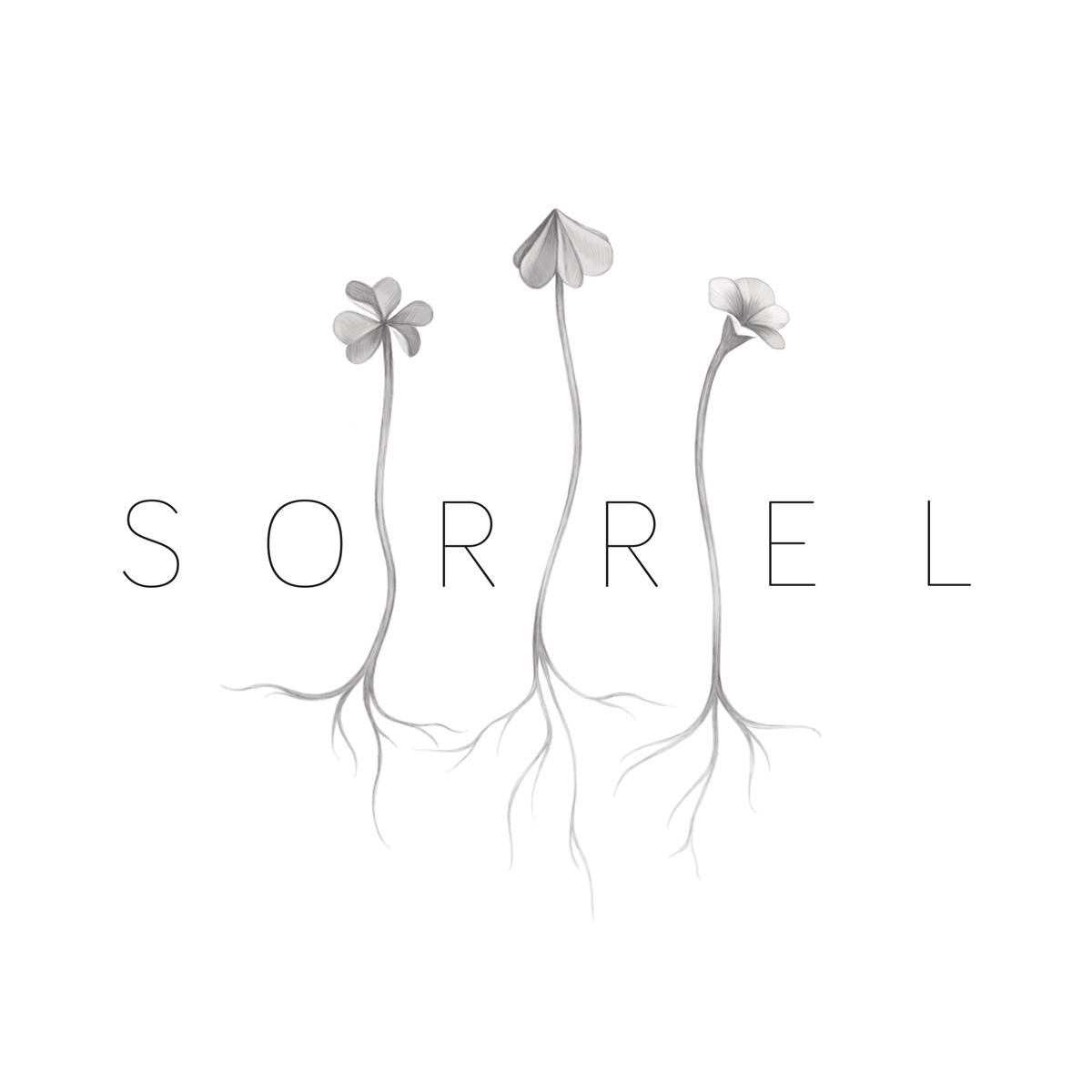 sophia sweeney sorrel logo